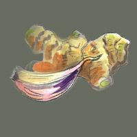 Ingwer-Knoblauch-Illu