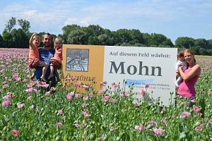 Mohnfeld