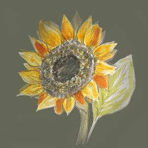 Sonnenblumenöl unbehandelt Illus