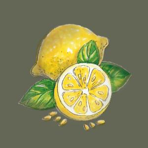 Zitronenkernöl Illus